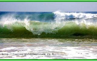 Какой самый теплый океан в мире — индийский или тихий?