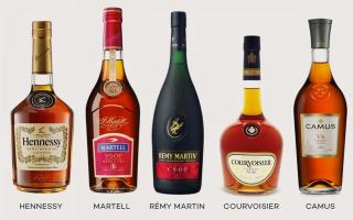 Какой самый лучший коньяк в мире: топ вкусных и элитных напитков