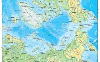Какой океан самый маленький по площади в мире?