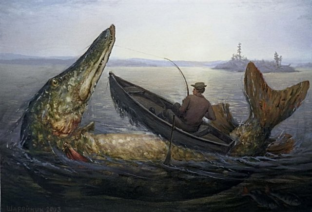 Самая большая пойманная щука – какого она была размера и сколько весила
