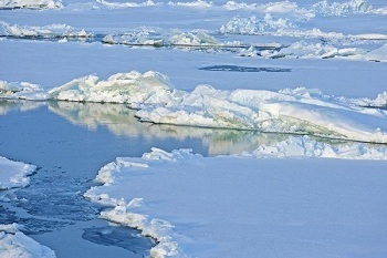 Какой самый холодный океан в мире?