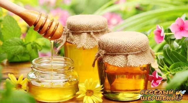 Какой мед самый полезный для мужчин и женщин?