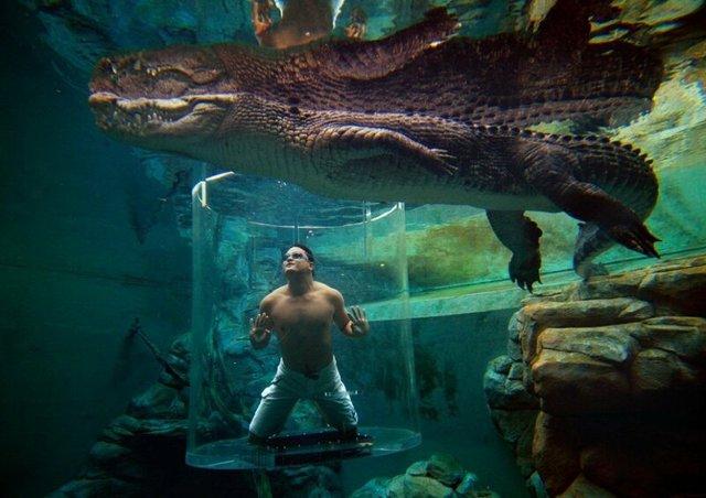 Самые большие бассейны в мире: топ-10