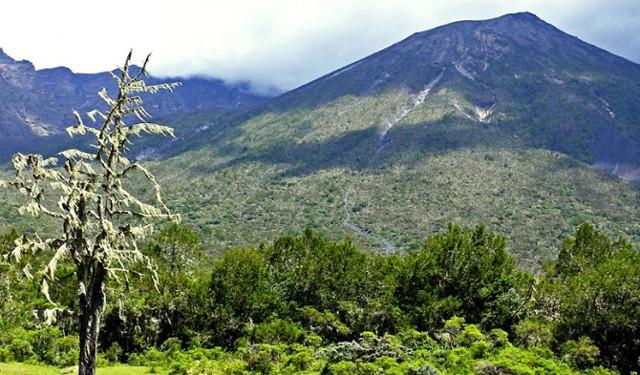 Какая самая высокая гора в африке: рейтинг больших вершин