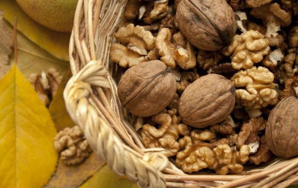 Самые полезные орехи для детей и взрослых, какая от них польза