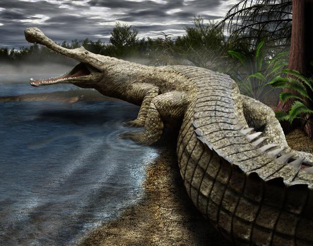 Какой самый большой динозавр на земле (наиболее крупные и хищные в мире)