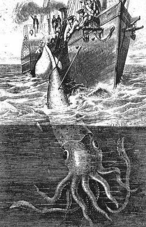 Какой самый большой в мире кальмар, истории и легенды о нем