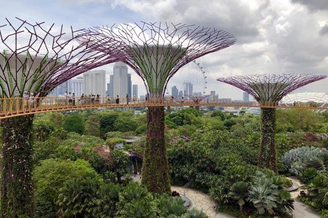 Самый экологически чистый город в мире, обзор стран с хорошей экологией