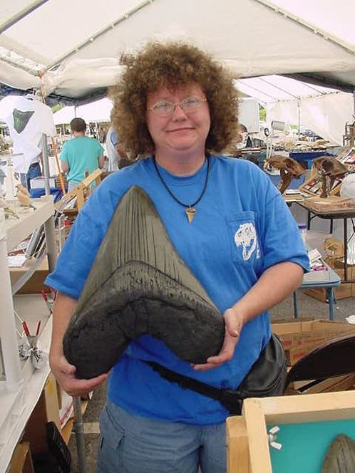 Самые большие зубы в мире, какое из животных обладает ими