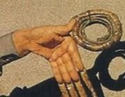 У кого самые длинные ногти в мире (на руках и ногах) + фото и видео