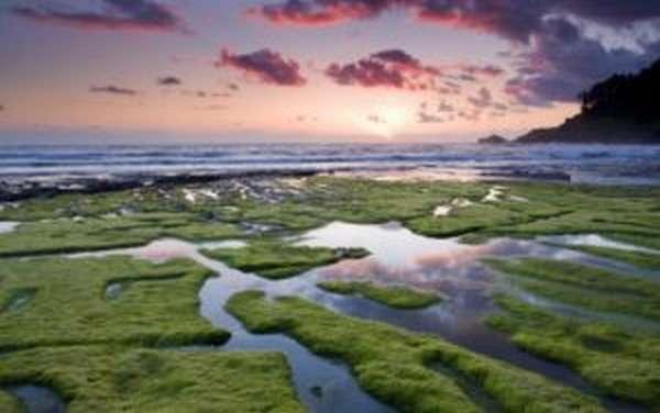 Какое самое большое море в мире по площади и глубине?