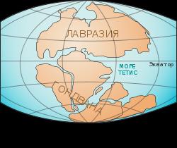 Самый крупный материк земли: какой из них самый большой по площади в мире