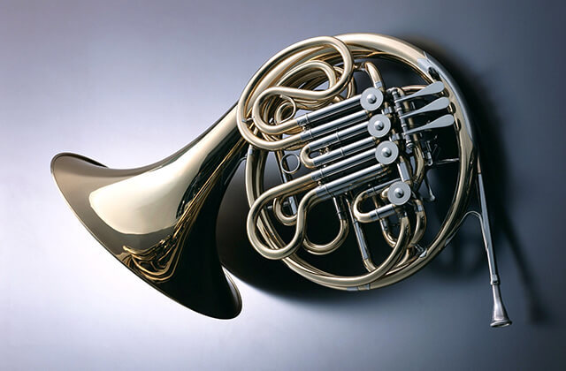 Какой музыкальный инструмент самый громкий